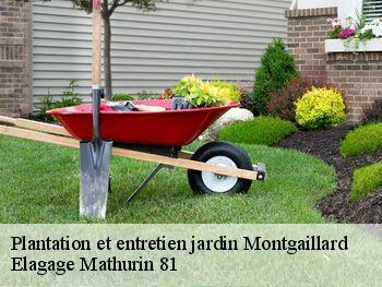 Jardinier pour entretien de jardin à Montgaillard tél: 05.32 ...